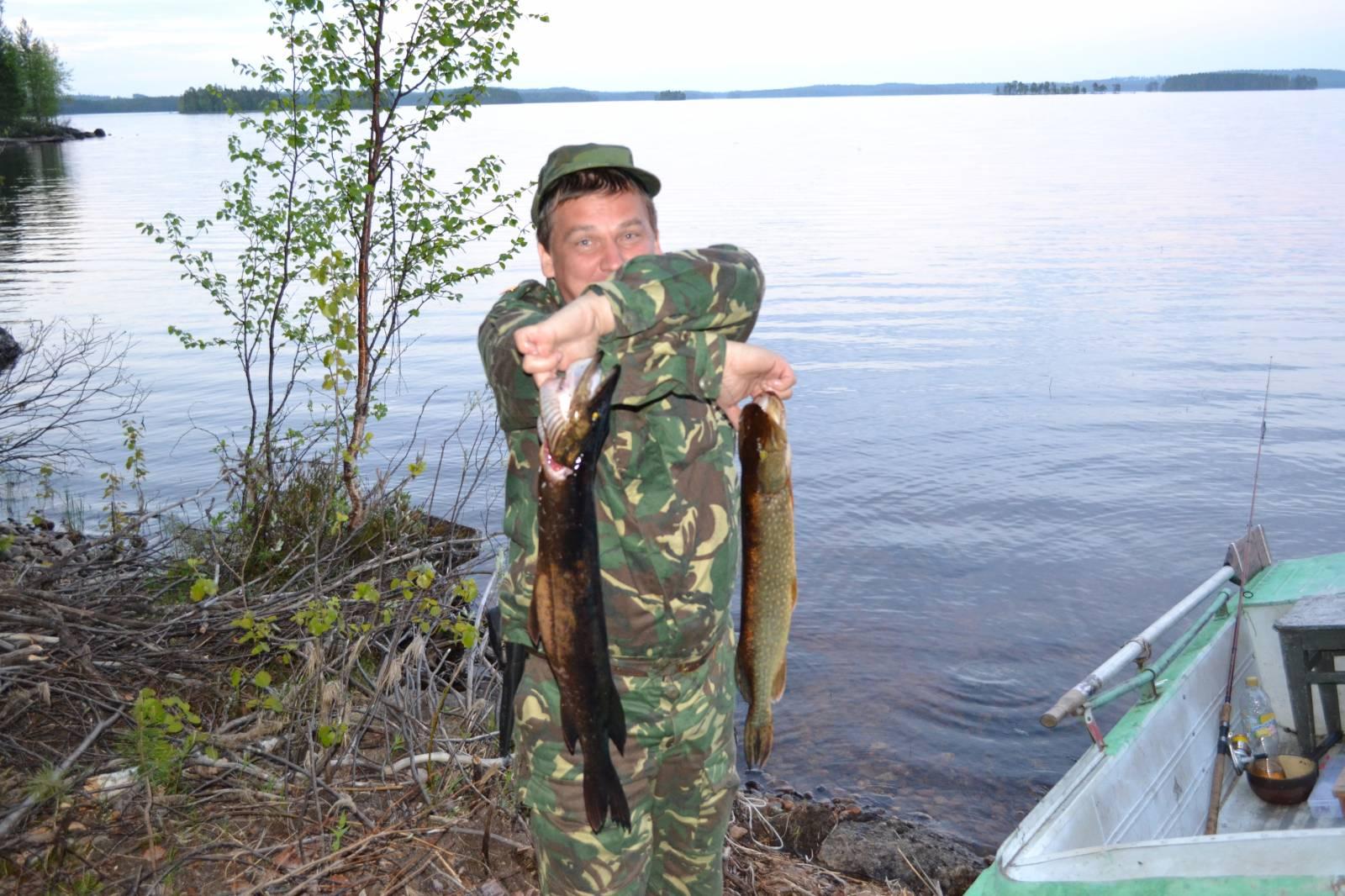 лексозеро рыбалка отчет